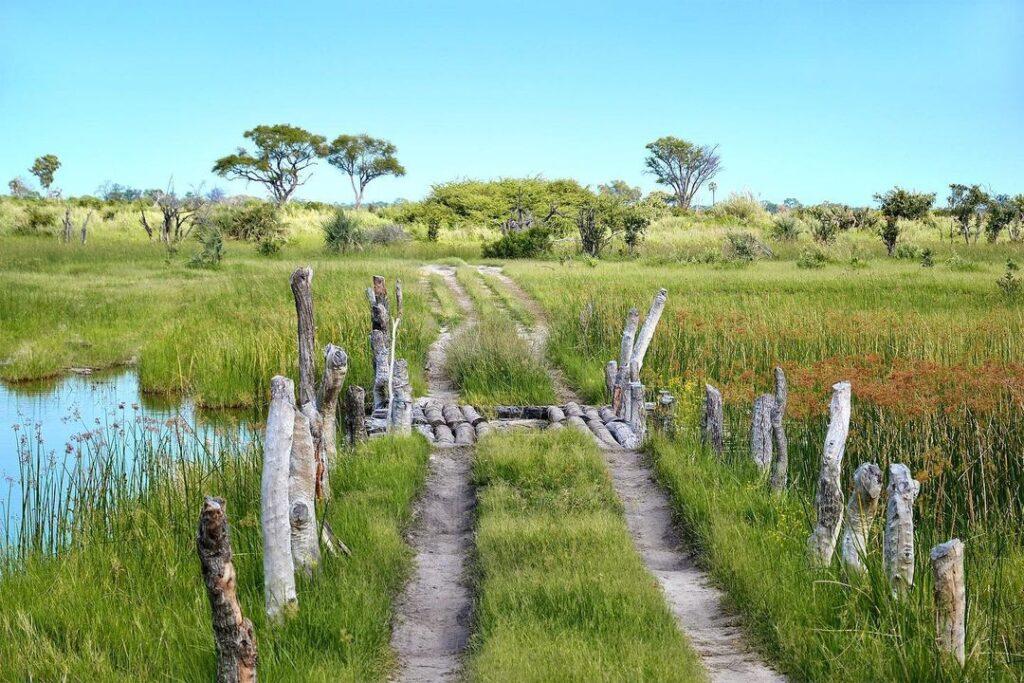 Botswana Honeymoon Guide