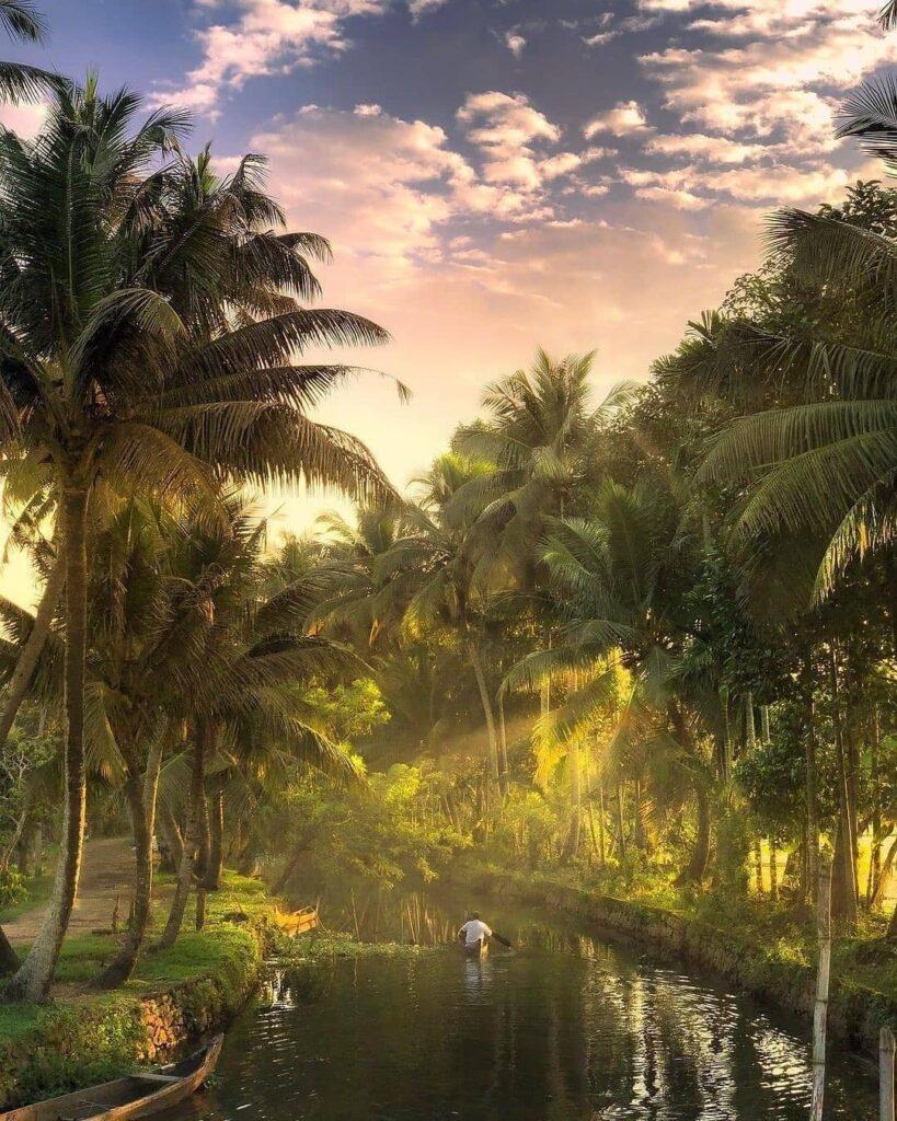 Kerala Alleppey Honeymoon Guide
