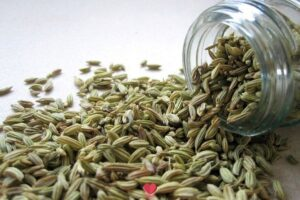 Fennel Seed benefits